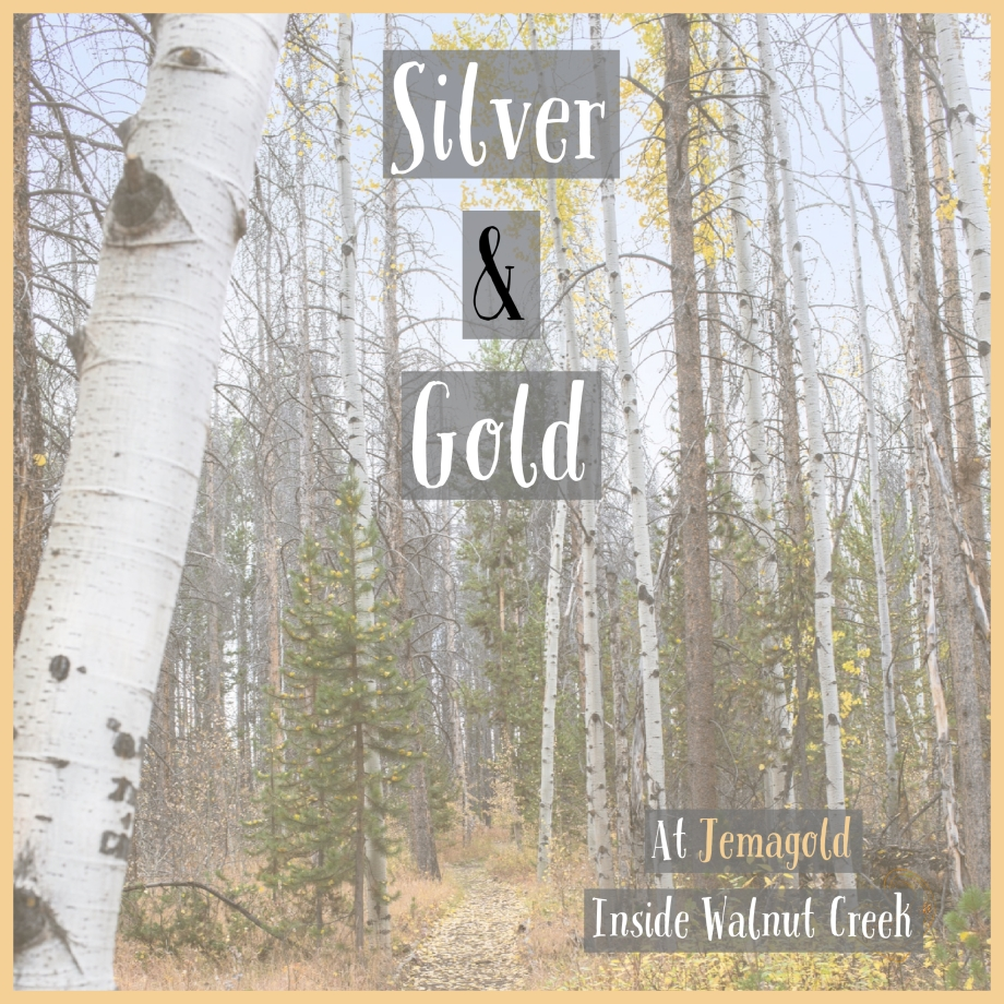 Silver & Gold.jpg